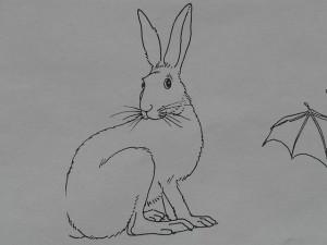 hare-8778_640